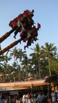 eagle hanging