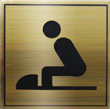 toilet-how-to